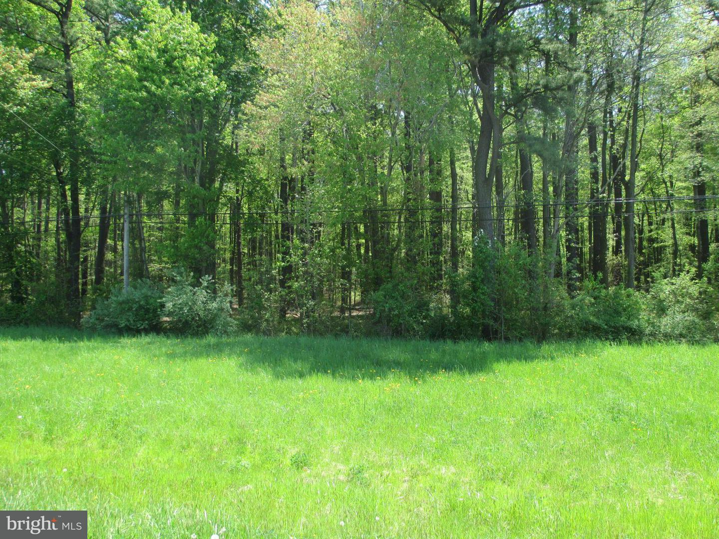 Land for Sale at 0 East Sharp St. And Rt. 20 Rock Hall, Maryland 21661 United States