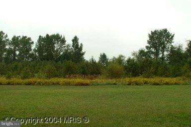 Land for Sale at Burrsville Rd Denton, Maryland 21629 United States