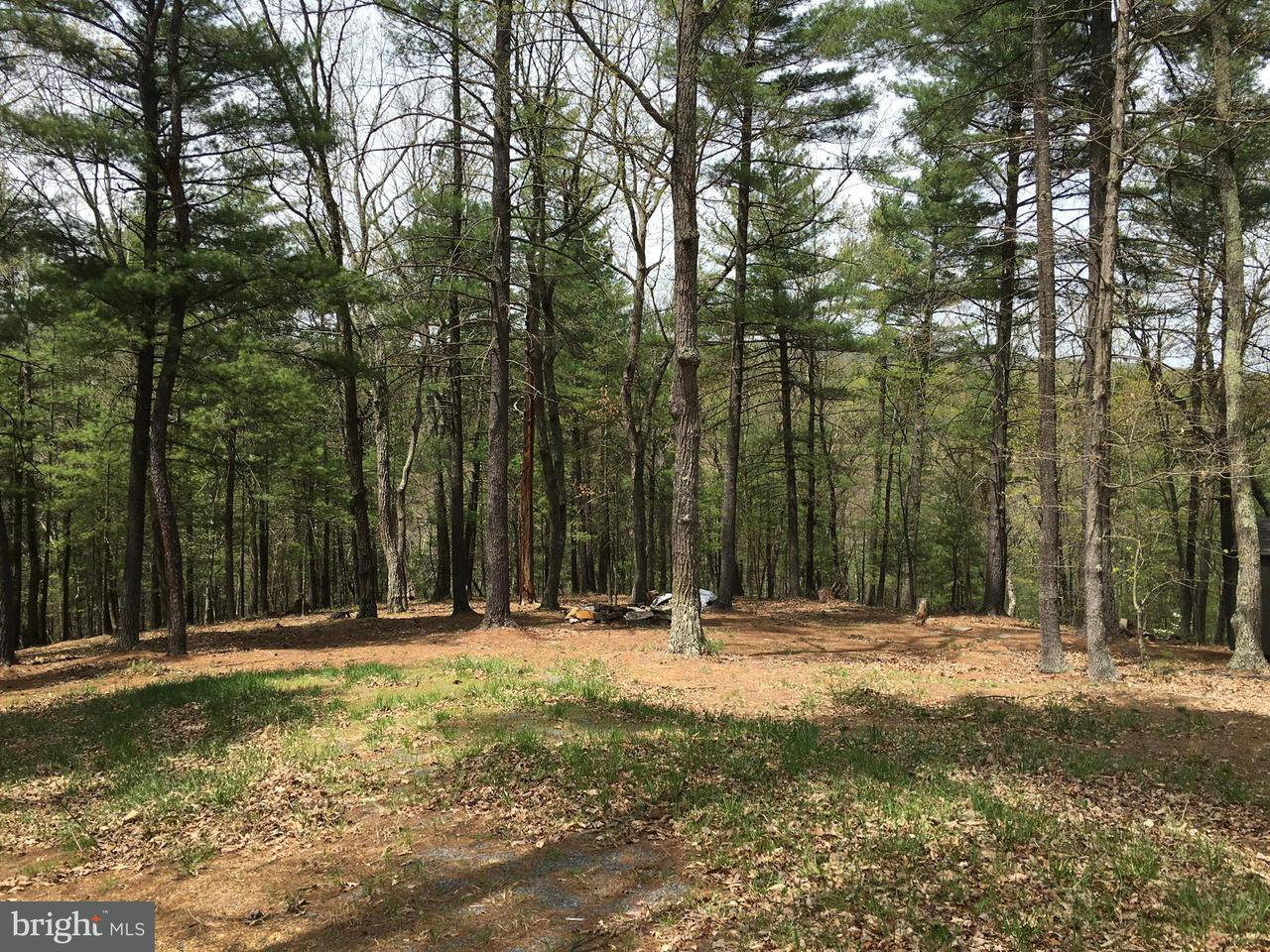 Land for Sale at 102 Mossy Oaks Rd Yellow Spring, West Virginia 26865 United States