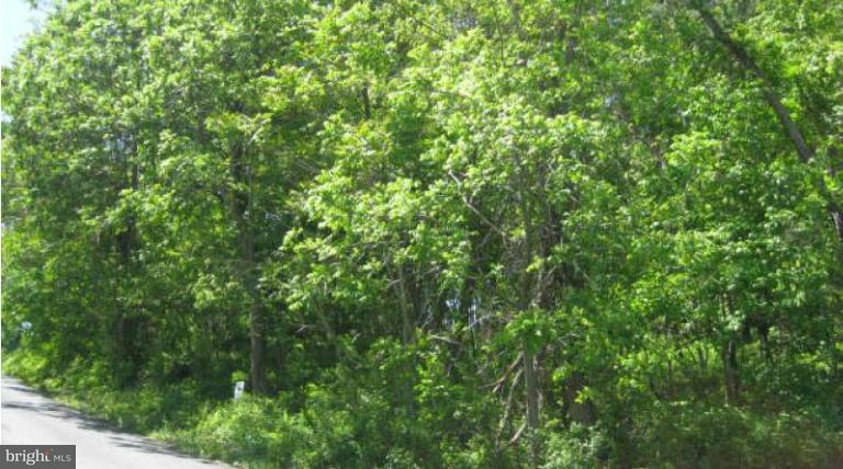 Additional photo for property listing at Greenwood Station Rd  Greenwood, Virginia 22943 United States
