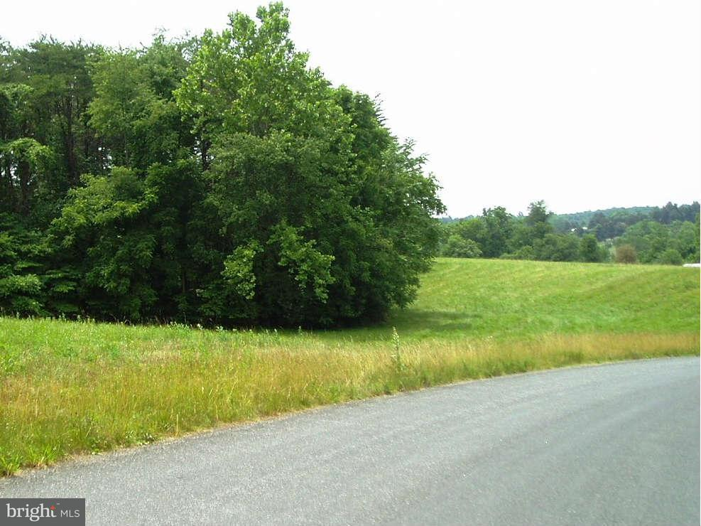 Additional photo for property listing at Beautiful Run  Madison, Virginia 22727 United States