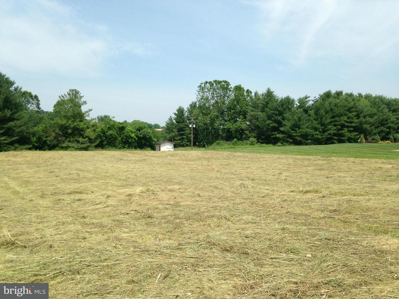 Land for Sale at Lot 1 Bowling View Rd Front Royal, Virginia 22630 United States