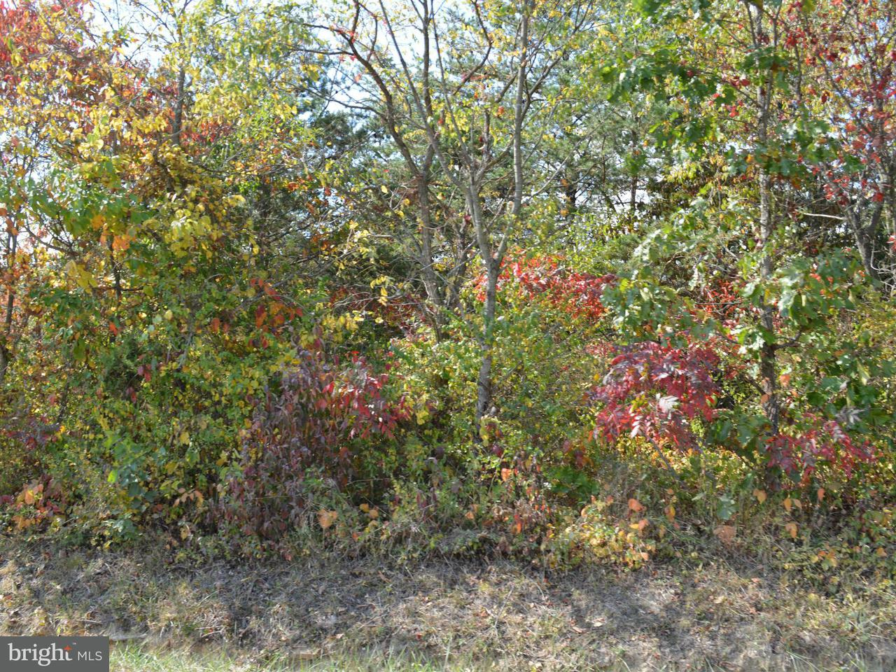 Additional photo for property listing at 0 Tabor Rd  Berkeley Springs, West Virginia 25411 United States