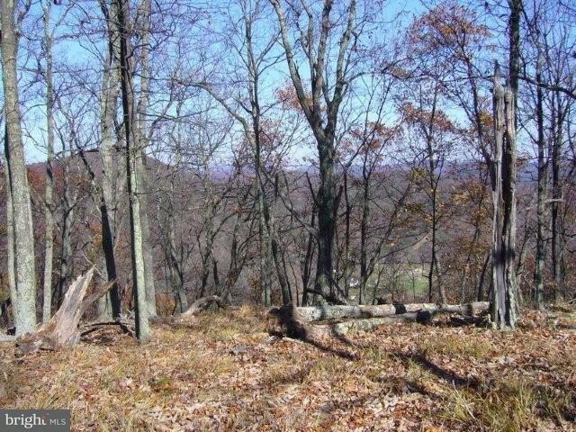 Land for Sale at Boulder Dr Mathias, West Virginia 26812 United States