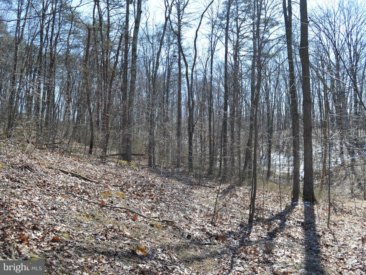 Additional photo for property listing at Little Creek Trl  Berkeley Springs, West Virginia 25411 United States