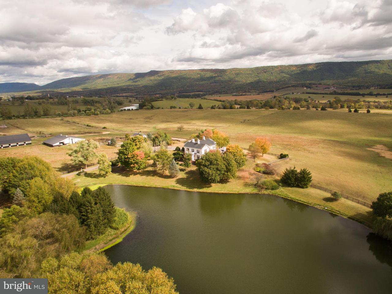 Farm for Sale at 13232 Valley Pike Timberville, Virginia 22853 United States