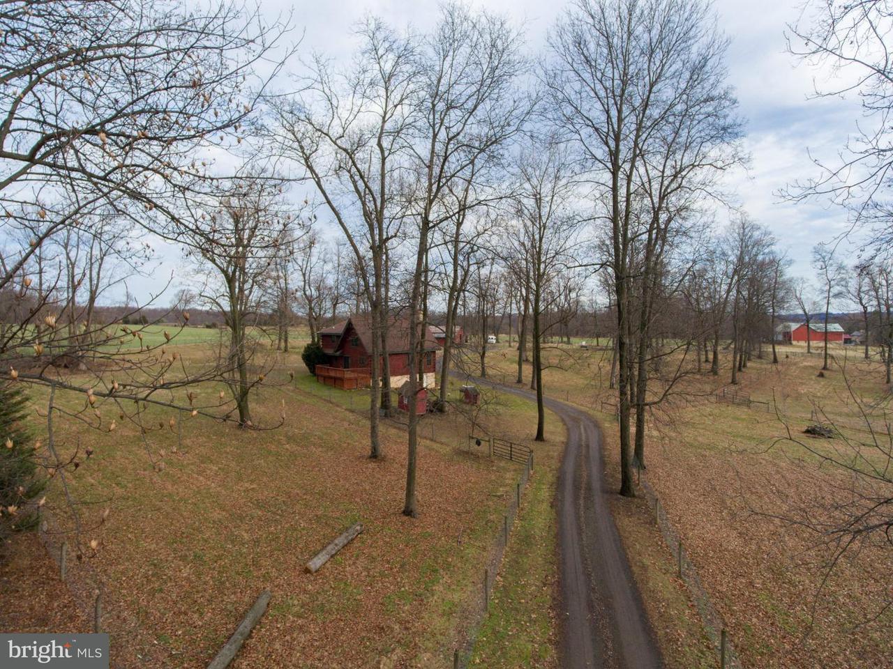 独户住宅 为 销售 在 20 CHIMIENTI Drive West Grove, 宾夕法尼亚州 19390 美国
