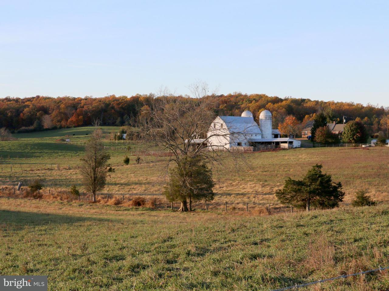農場 為 出售 在 4484 Lee Hwy 4484 Lee Hwy Warrenton, 弗吉尼亞州 20187 美國