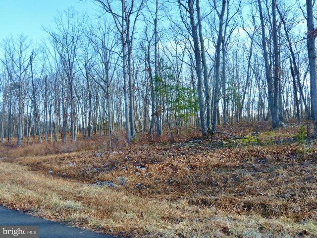 Land for Sale at Lot 35 Comforter Ln Middletown, Virginia 22645 United States