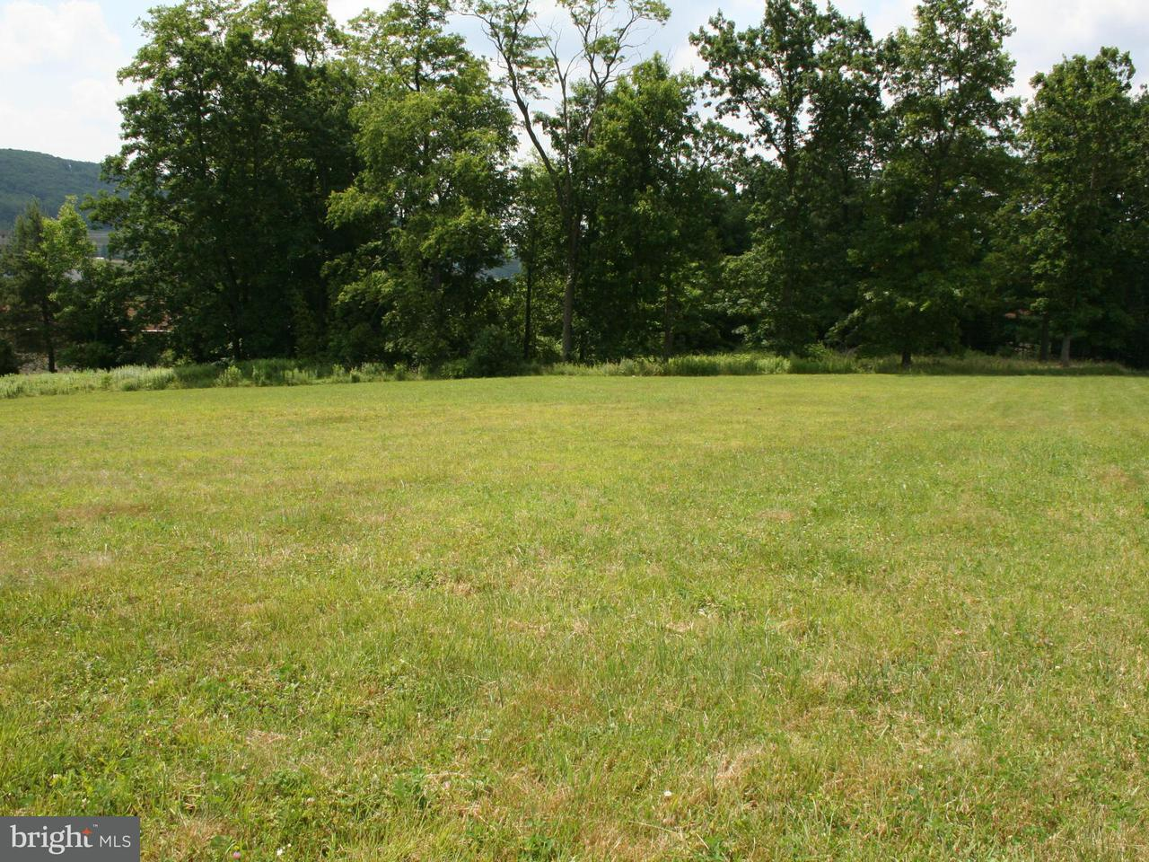 Additional photo for property listing at 0 Northlake Dr  Mc Henry, Maryland 21541 United States