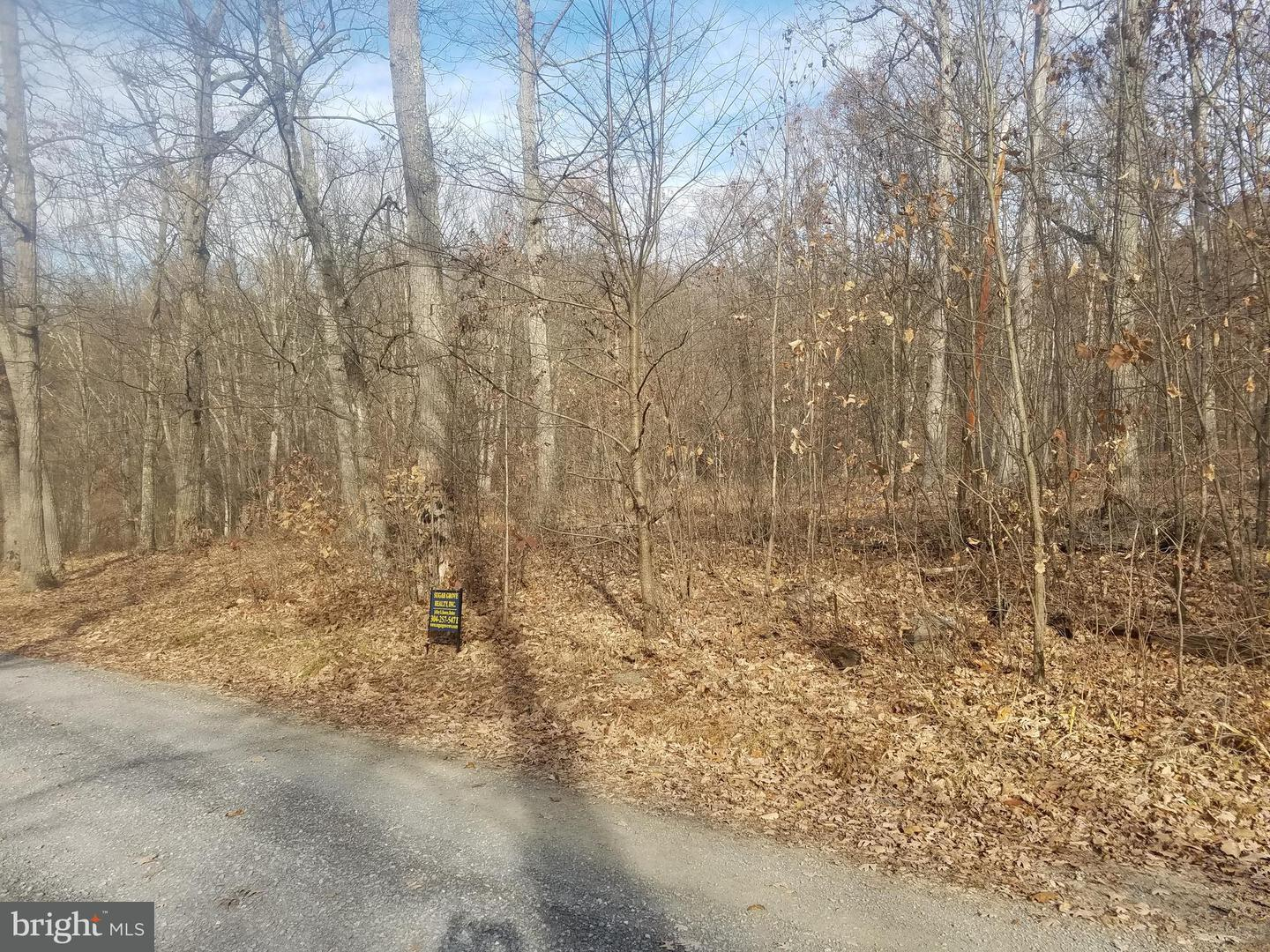 Land for Sale at Old Fields Sub-Division NE Old Fields, West Virginia 26845 United States