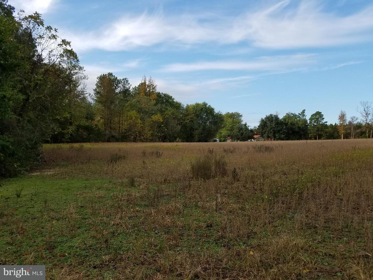 Land for Sale at Calvary Church Rd Warsaw, Virginia 22572 United States