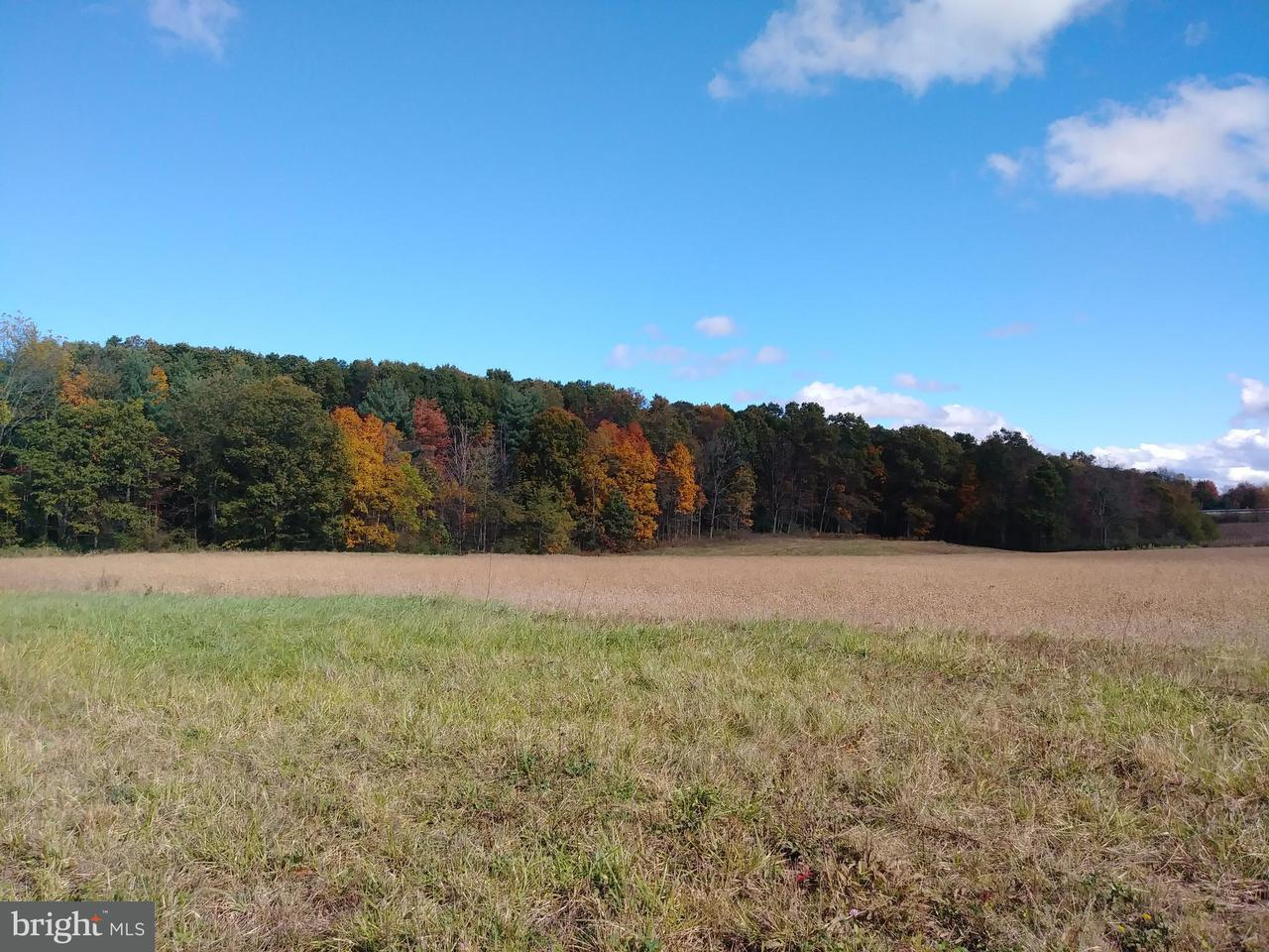 Land for Sale at Open Plains Rd Little Orleans, Maryland 21766 United States