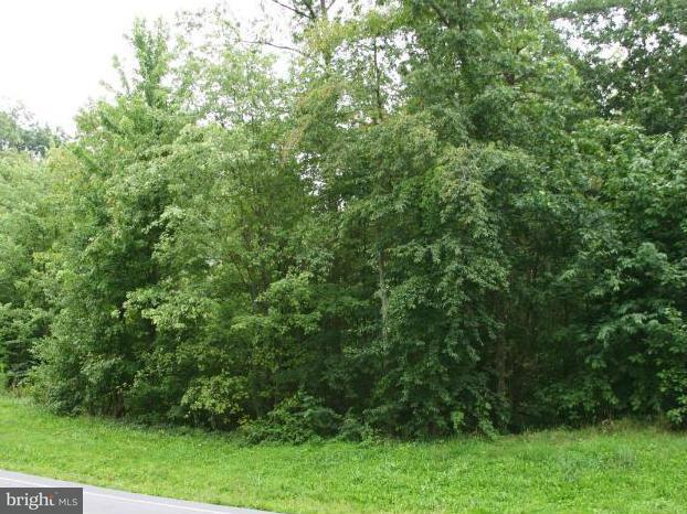 Land for Sale at 6595 Pullhook Ln Fayetteville, Pennsylvania 17222 United States
