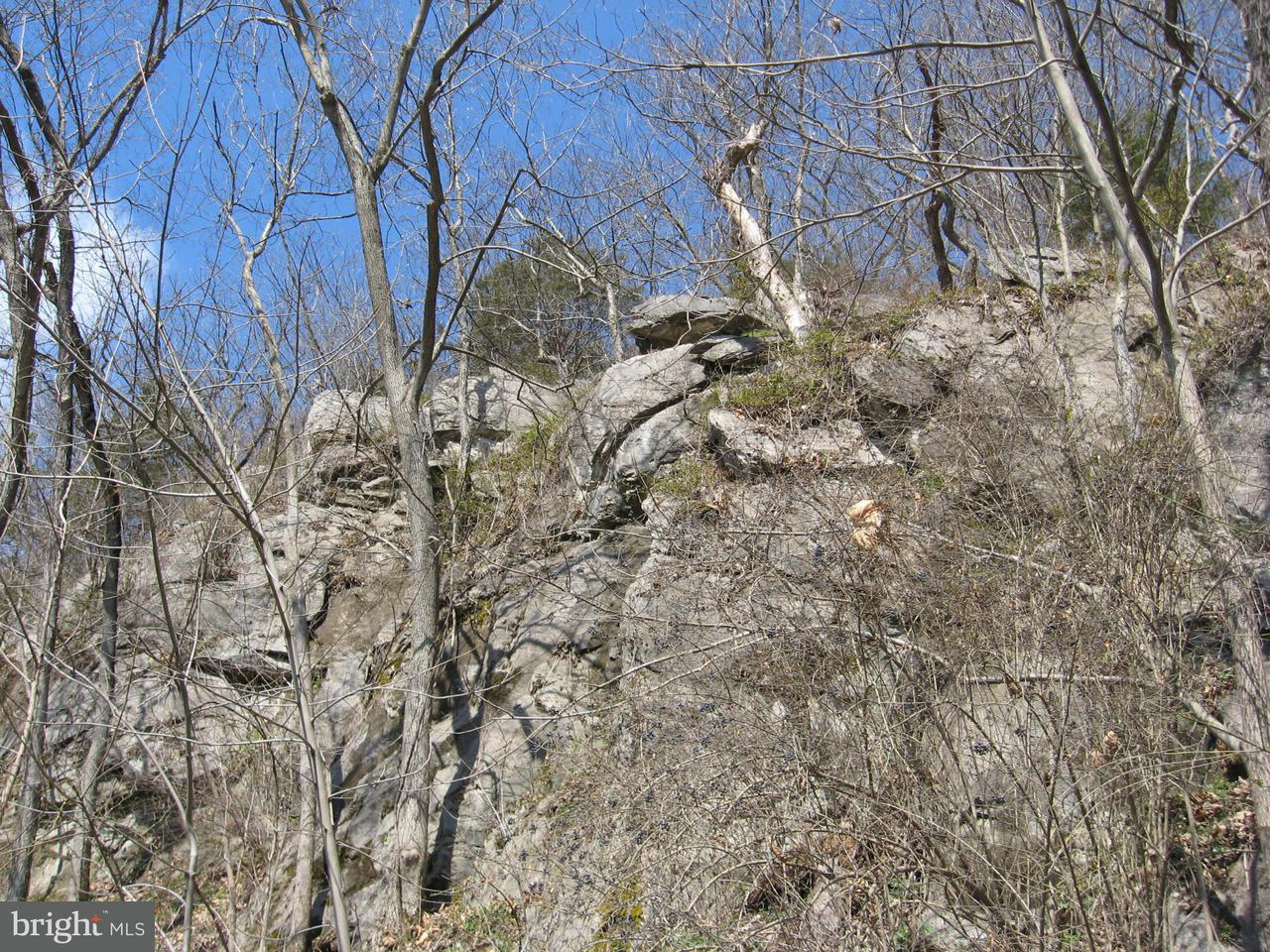 Additional photo for property listing at Lot S Benny's Beach Rd  Front Royal, Virginia 22630 United States