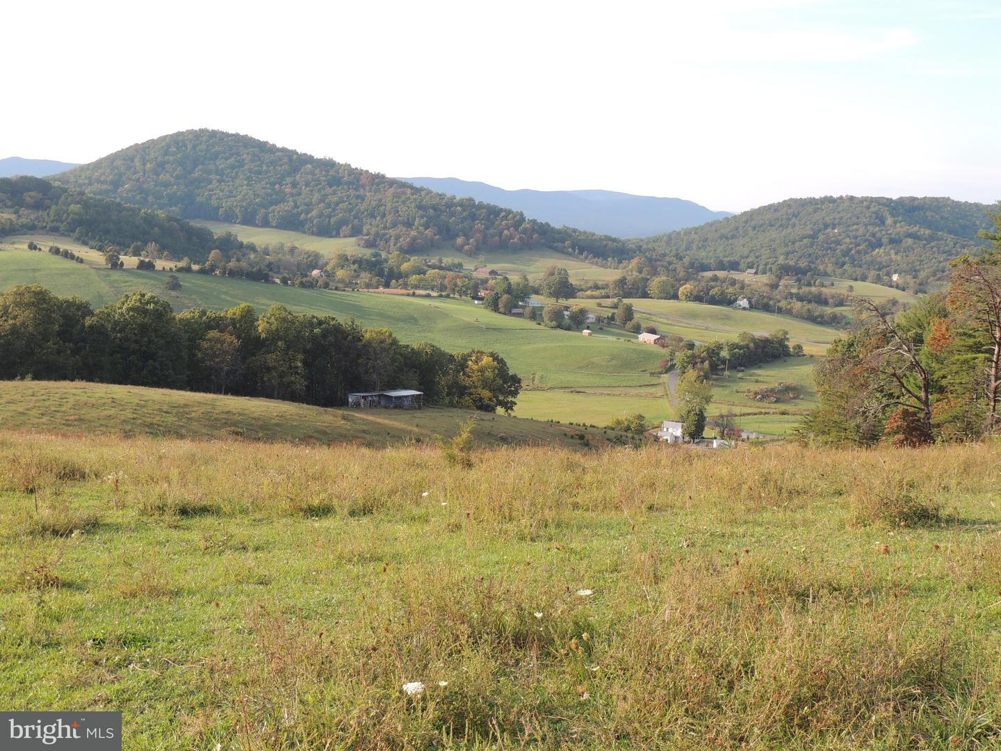 Land for Sale at Gooney Manor Loop Bentonville, Virginia 22610 United States