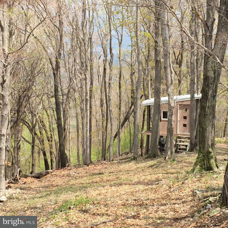Land for Sale at 45 Bucktail Ln New Creek, West Virginia 26743 United States