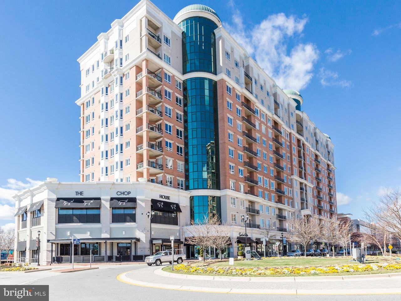 Кондоминиум для того Продажа на 1915 Towne Centre Blvd #203 1915 Towne Centre Blvd #203 Annapolis, Мэриленд 21401 Соединенные Штаты