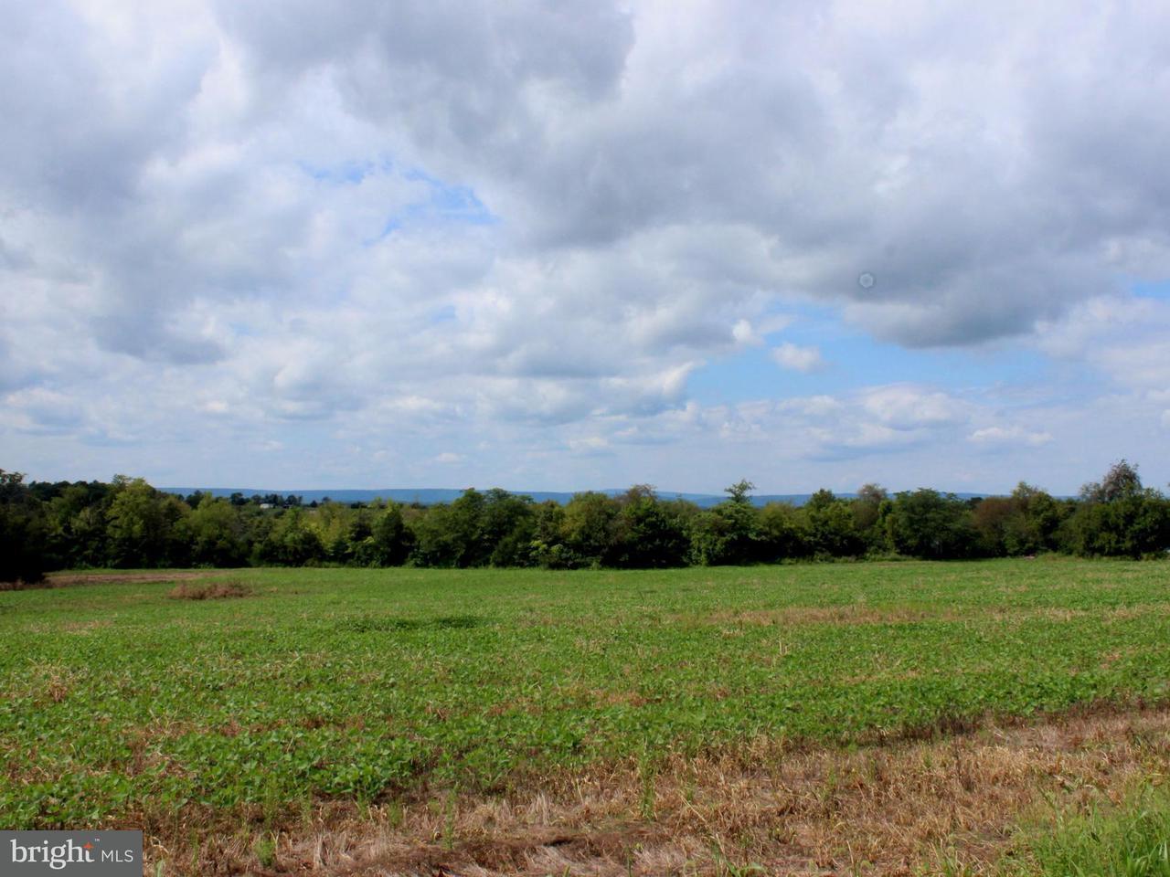 Land for Sale at 0 N Childs Rd Kearneysville, West Virginia 25430 United States