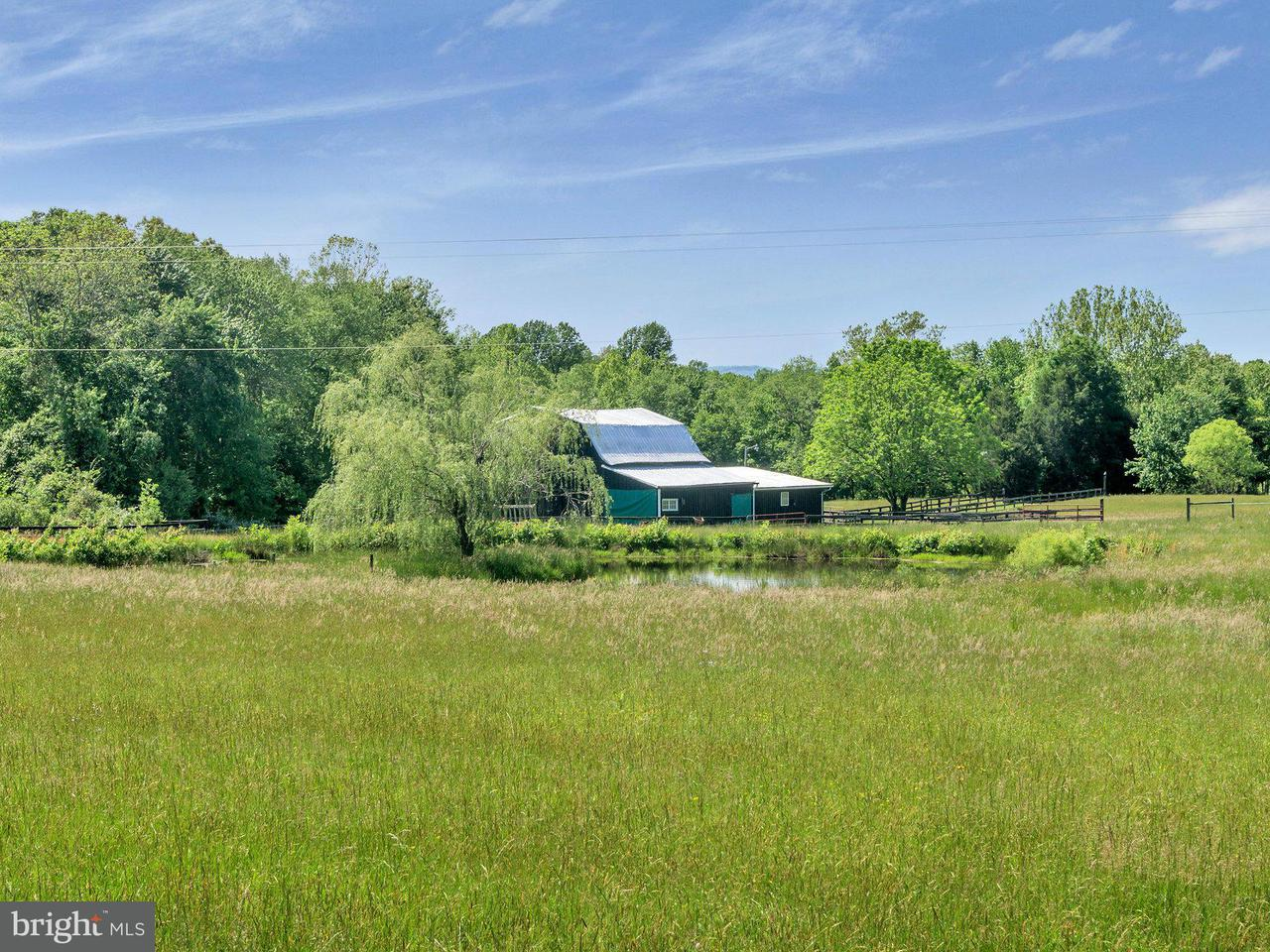 Farm for Sale at 7303 Poindexter Road 7303 Poindexter Road Louisa, Virginia 23093 United States