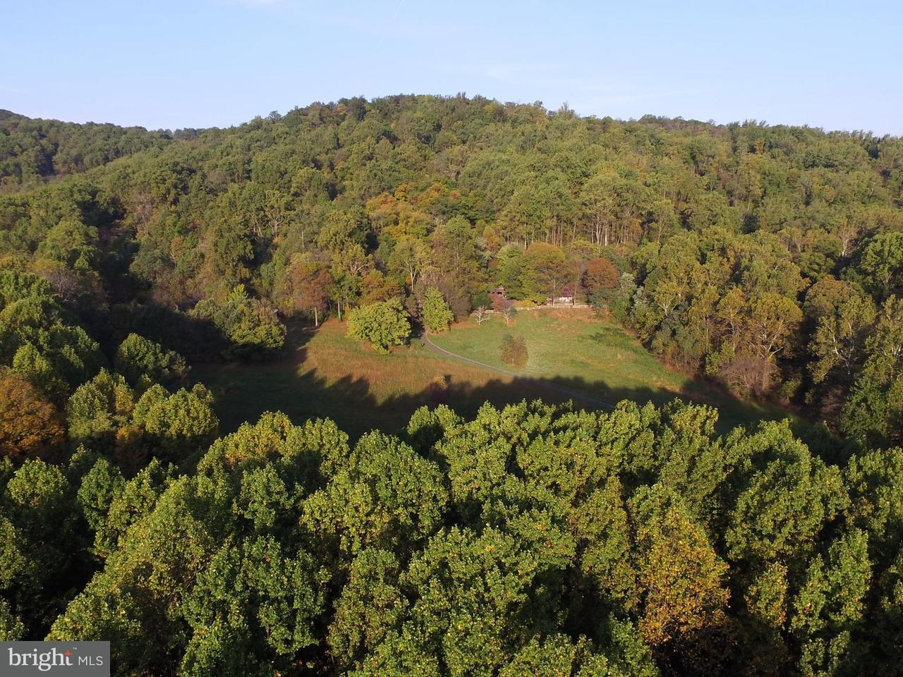 Land for Sale at Moss Hollow Road Moss Hollow Road Markham, Virginia 22643 United States