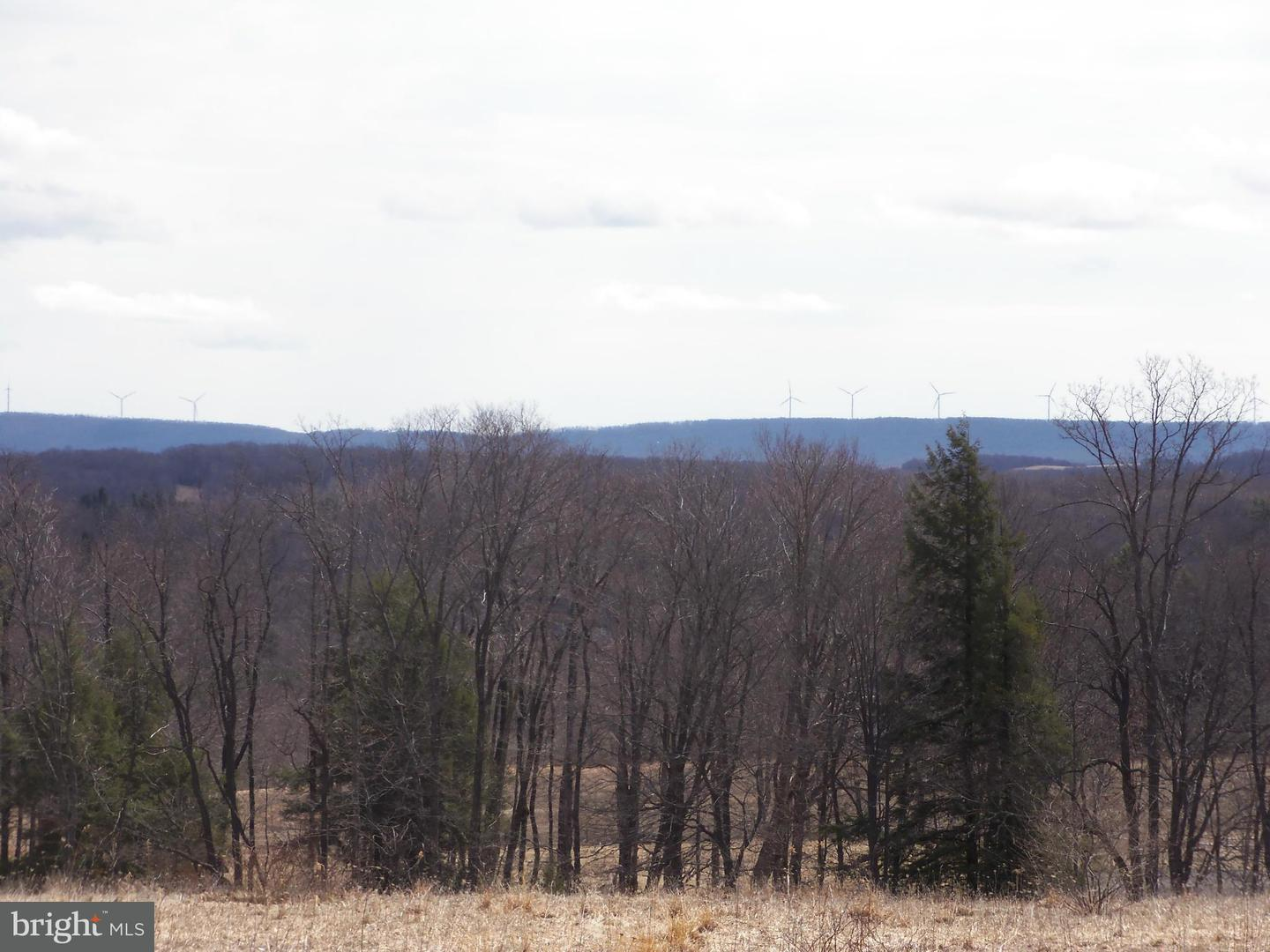 Land for Sale at 59 Snowy Creek Ln Corinth, West Virginia 26764 United States