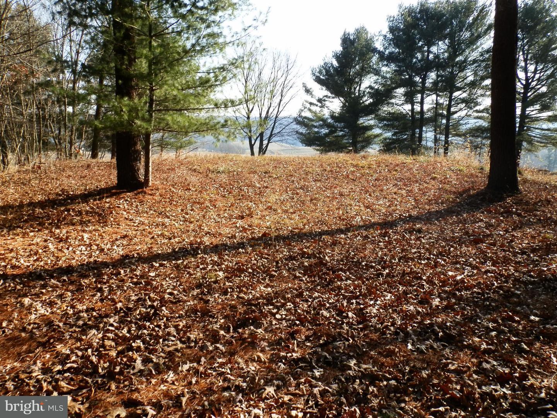 Land for Sale at 0 Longhorn Dr Huntingdon, Pennsylvania 16652 United States