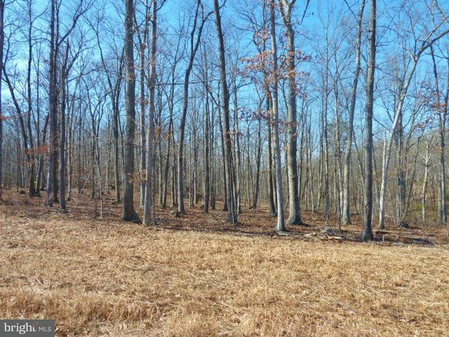 Additional photo for property listing at Lot 32 Comforter Ln  Middletown, Virginia 22645 United States