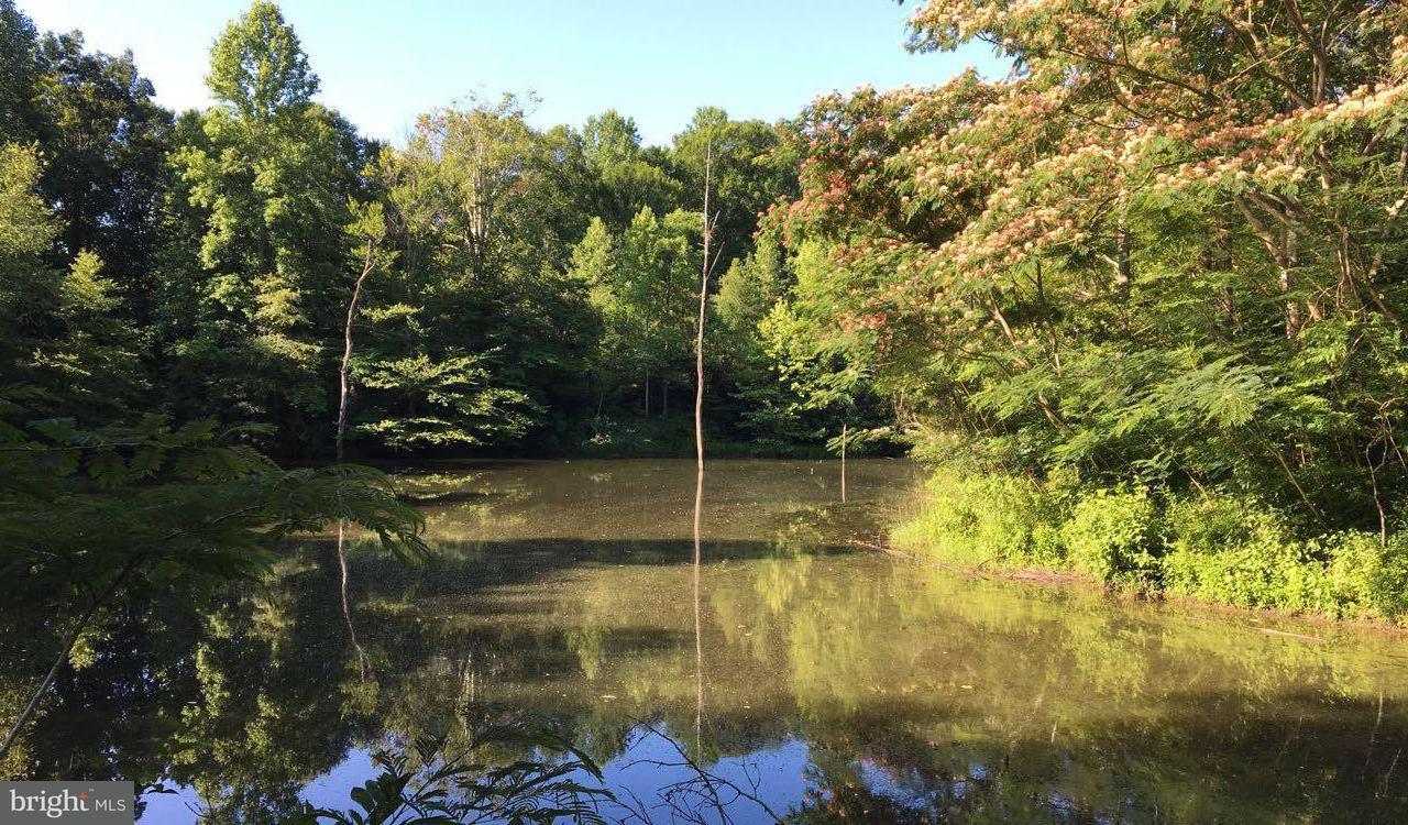 Land for Sale at 0 Fork Bridge Rd Milford, Virginia 22514 United States