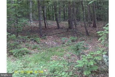 Land for Sale at Supinlick Ridge Rd Basye, Virginia 22810 United States