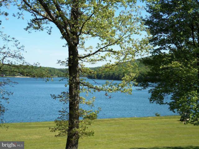 Land for Sale at 56lot Goldenrod Dr Terra Alta, West Virginia 26764 United States