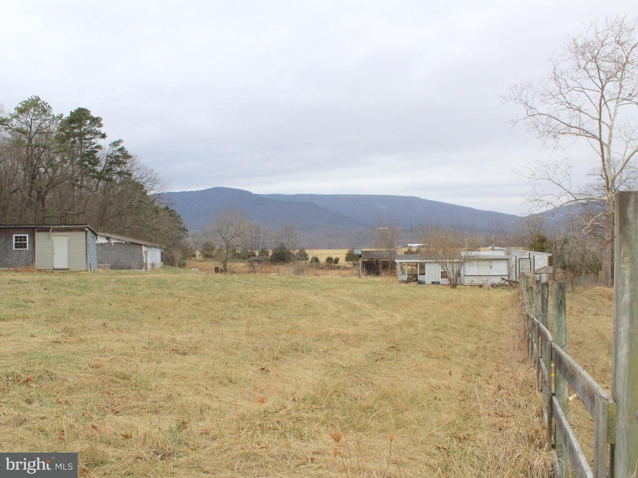 Land for Sale at 1400 Mike Longs Woods Rd Stanley, Virginia 22851 United States