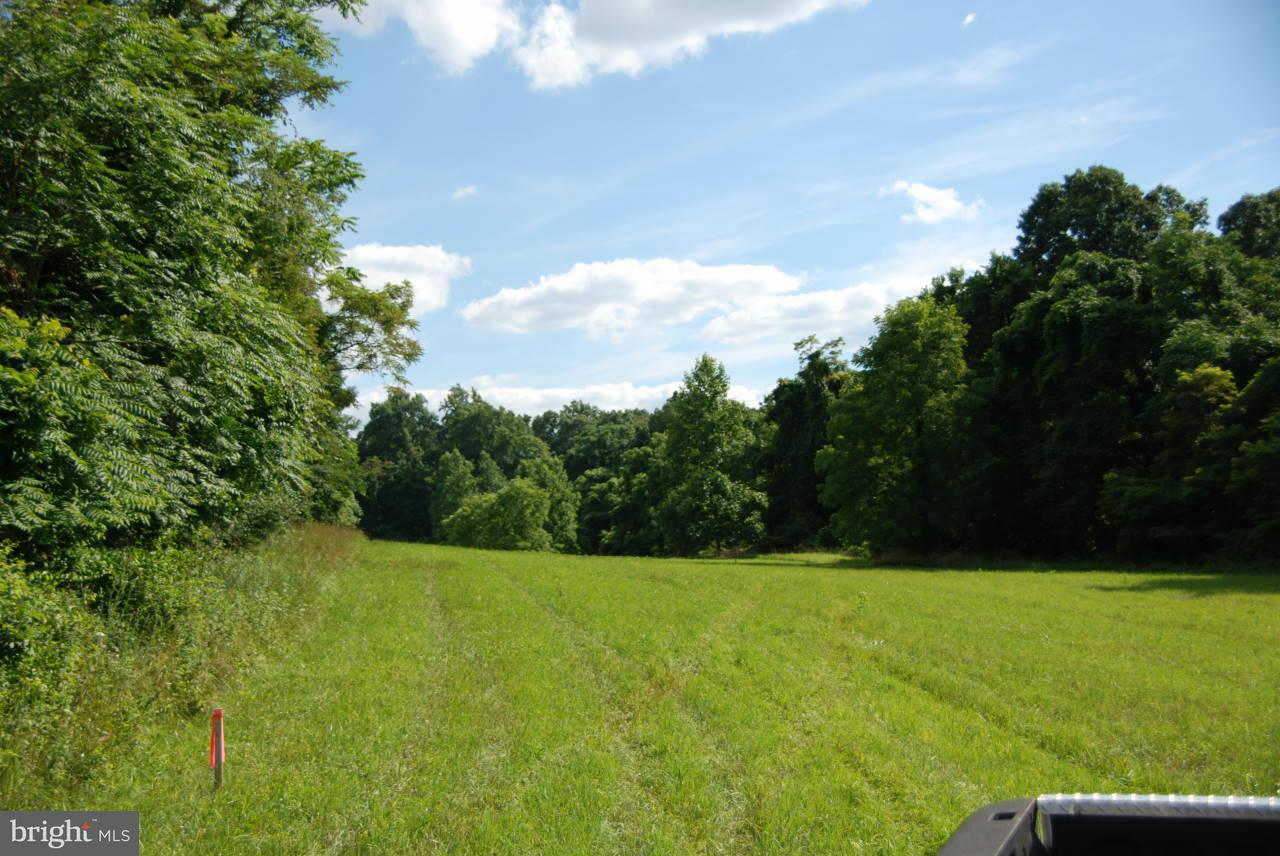 Land for Sale at Rooney Road Hedgesville, West Virginia 25427 United States