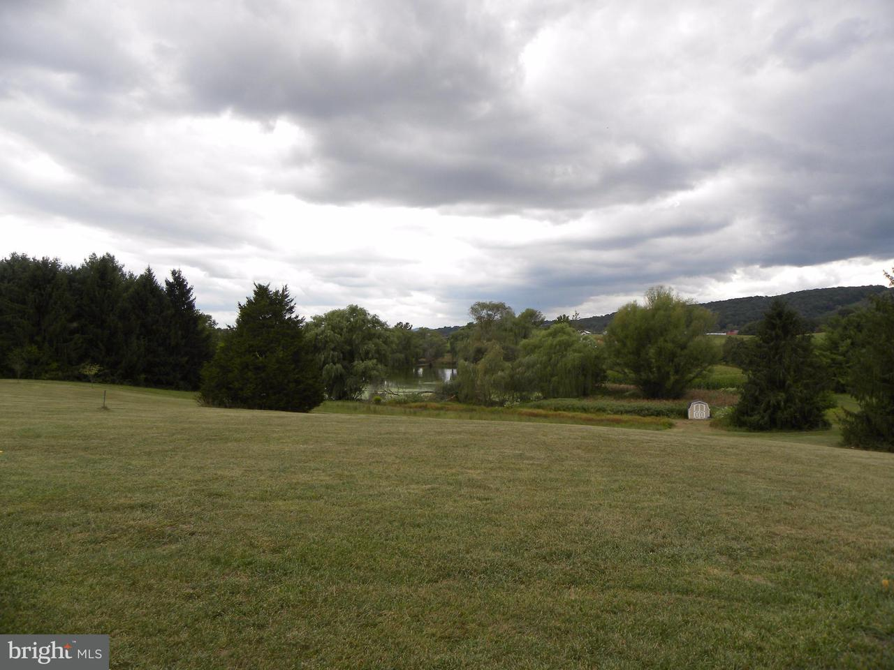 Additional photo for property listing at 2043 Pleasant View Road 2043 Pleasant View Road Mount Jackson, 弗吉尼亚州 22842 美国