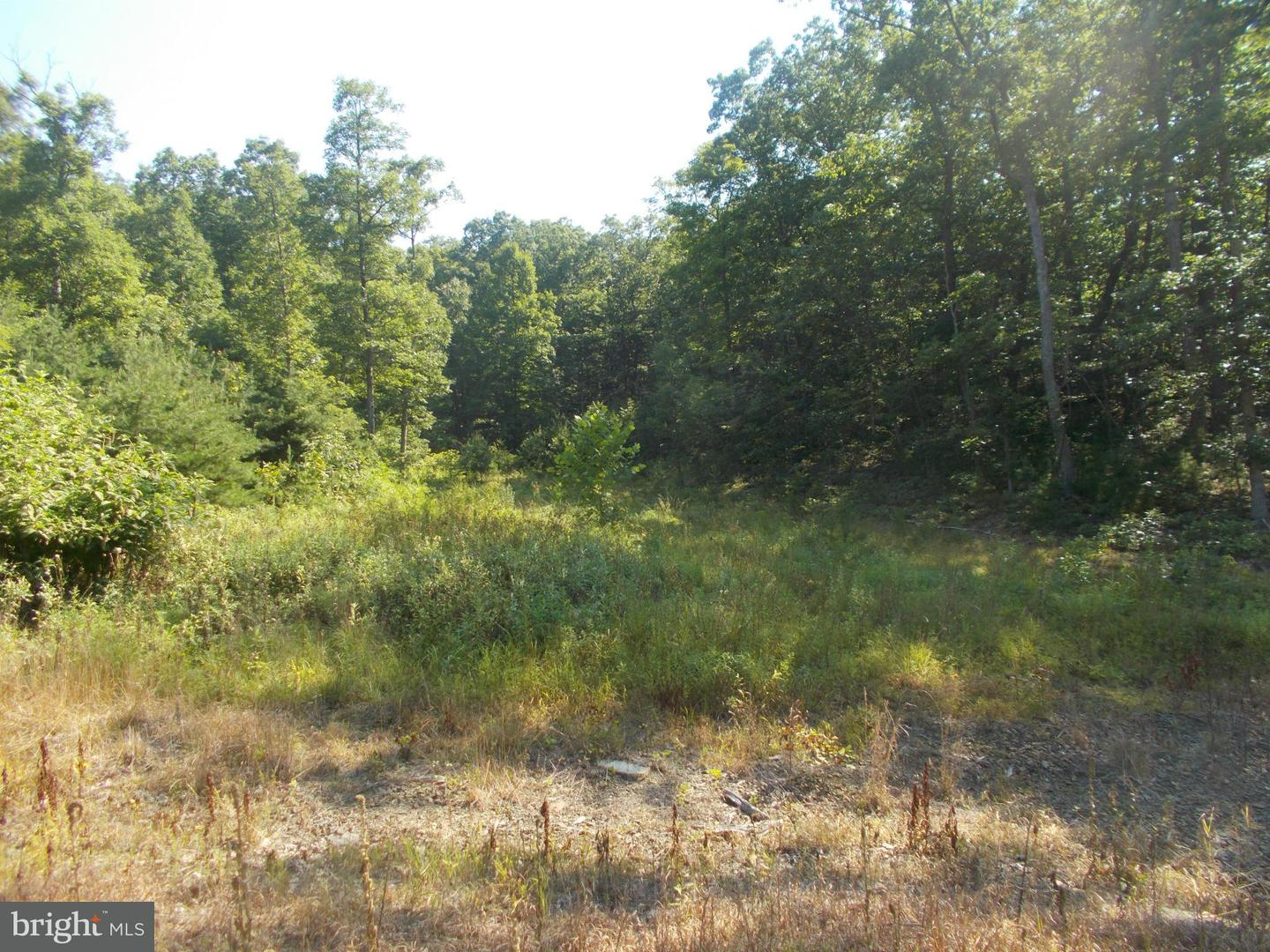 Additional photo for property listing at Rt 28/4  Fort Ashby, West Virginia 26719 United States