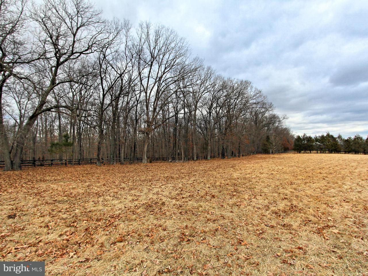 Land for Sale at 3482 Pin Oak Ct Catharpin, Virginia 20143 United States