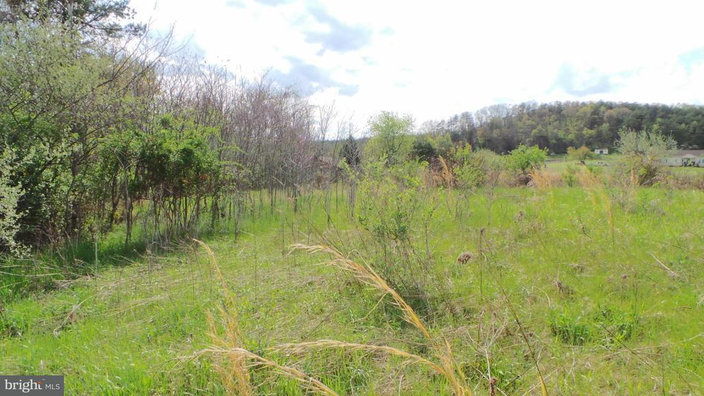Land for Sale at 13 Amulet Drive Berkeley Springs, West Virginia 25411 United States
