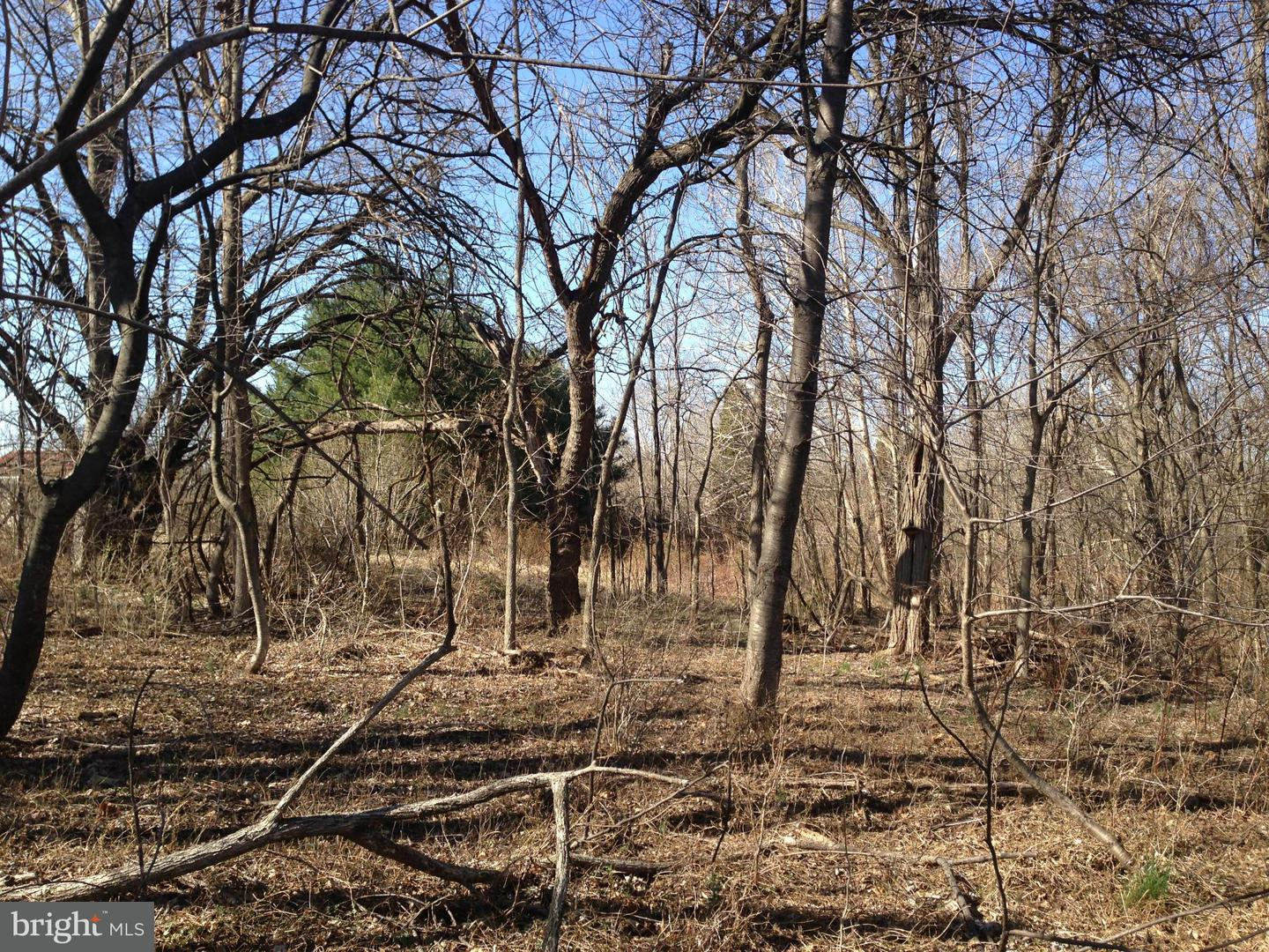 Land for Sale at 16014 Findlay Mill Rd Williamsport, Maryland 21795 United States