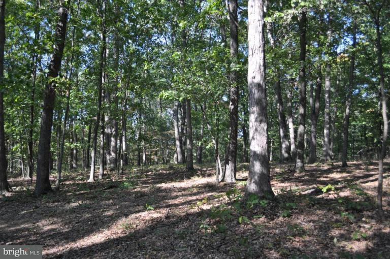 Land for Sale at Highland Ridge Rd. Berkeley Springs, West Virginia 25411 United States