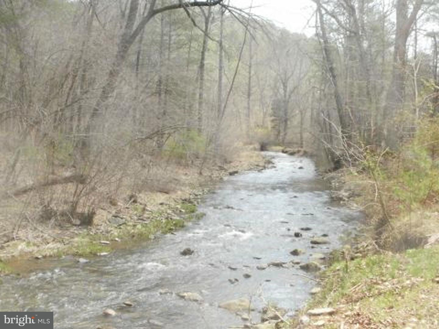 Additional photo for property listing at Forest Grove Rd  Front Royal, Virginia 22630 United States