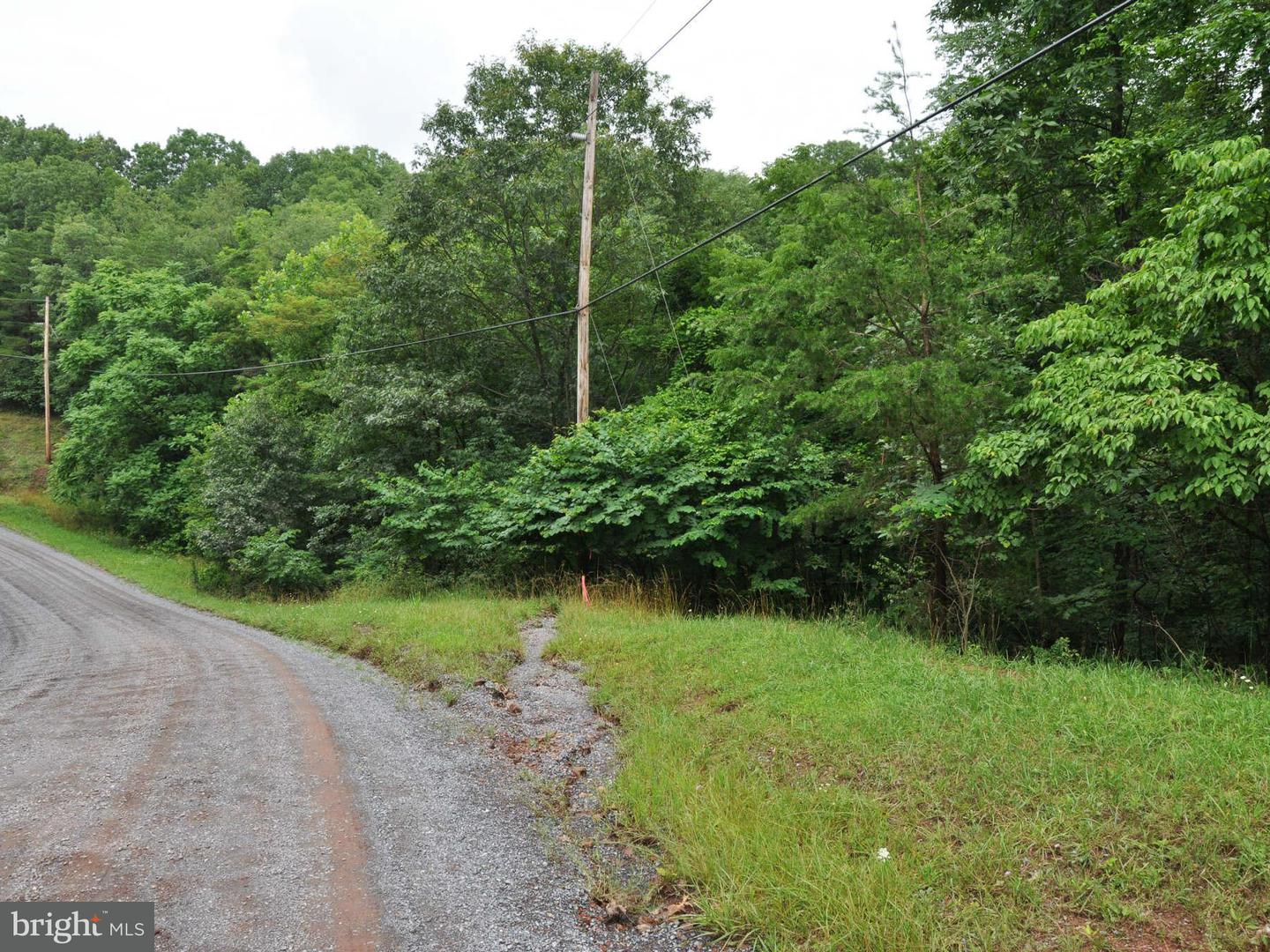 Land for Sale at L-104 Logger Dr Gore, Virginia 22637 United States