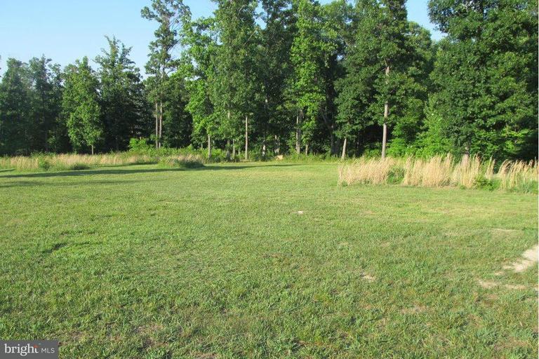 Land for Sale at Nature Ln Shenandoah, Virginia 22849 United States