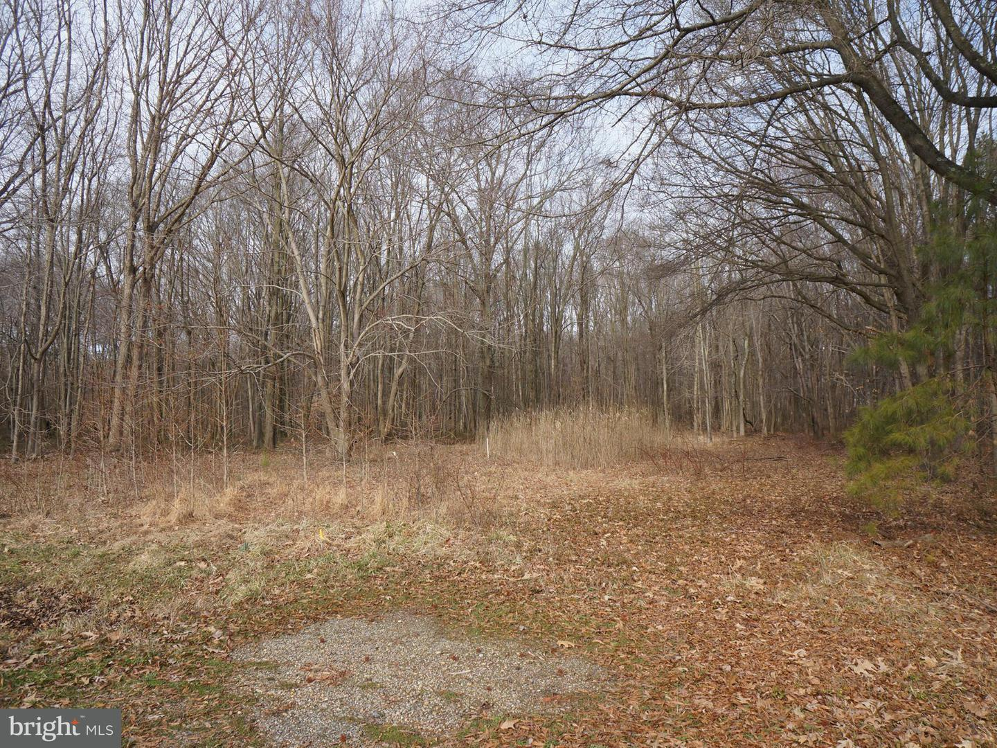 Land for Sale at 9048 Georgetown Rd Chestertown, Maryland 21620 United States