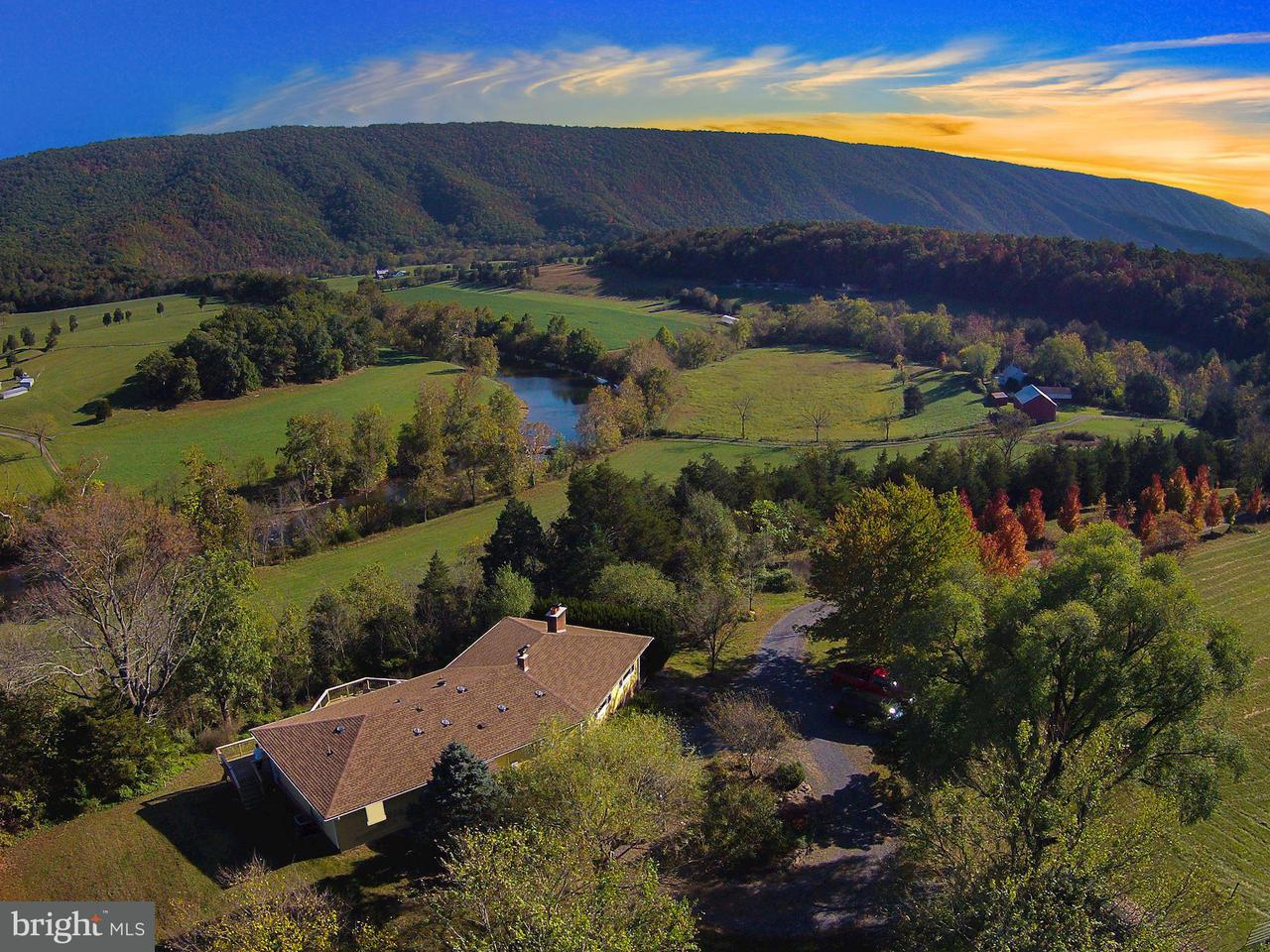 Farm for Sale at 1635 Riverview Dr Toms Brook, Virginia 22660 United States