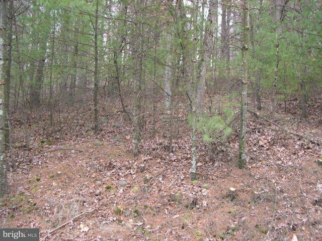 Additional photo for property listing at 0 Beaver Rd  Basye, Virginia 22810 United States