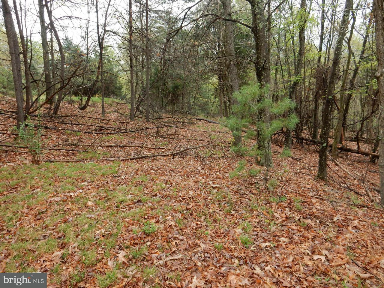 Land for Sale at Pearles Lane Capon Springs, West Virginia 26823 United States