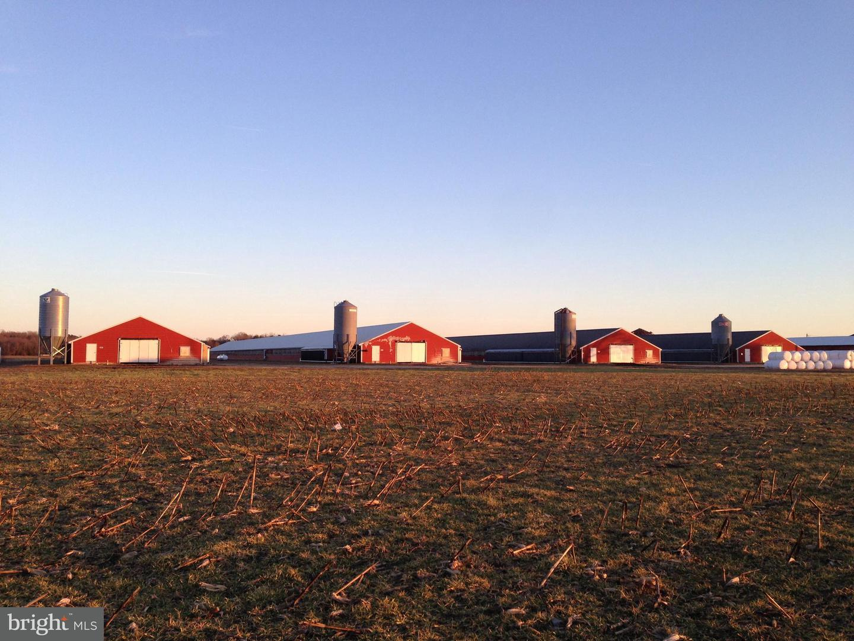 Farm for Sale at 7347 Harmony Rd Preston, Maryland 21655 United States