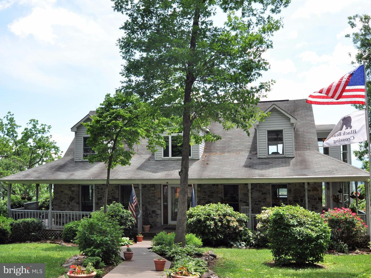 Villa per Vendita alle ore 184 Clark Lane 184 Clark Lane Washington, Virginia 22747 Stati Uniti