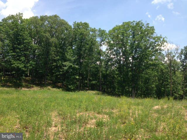 Land for Sale at Timberlake Dr New Creek, West Virginia 26743 United States