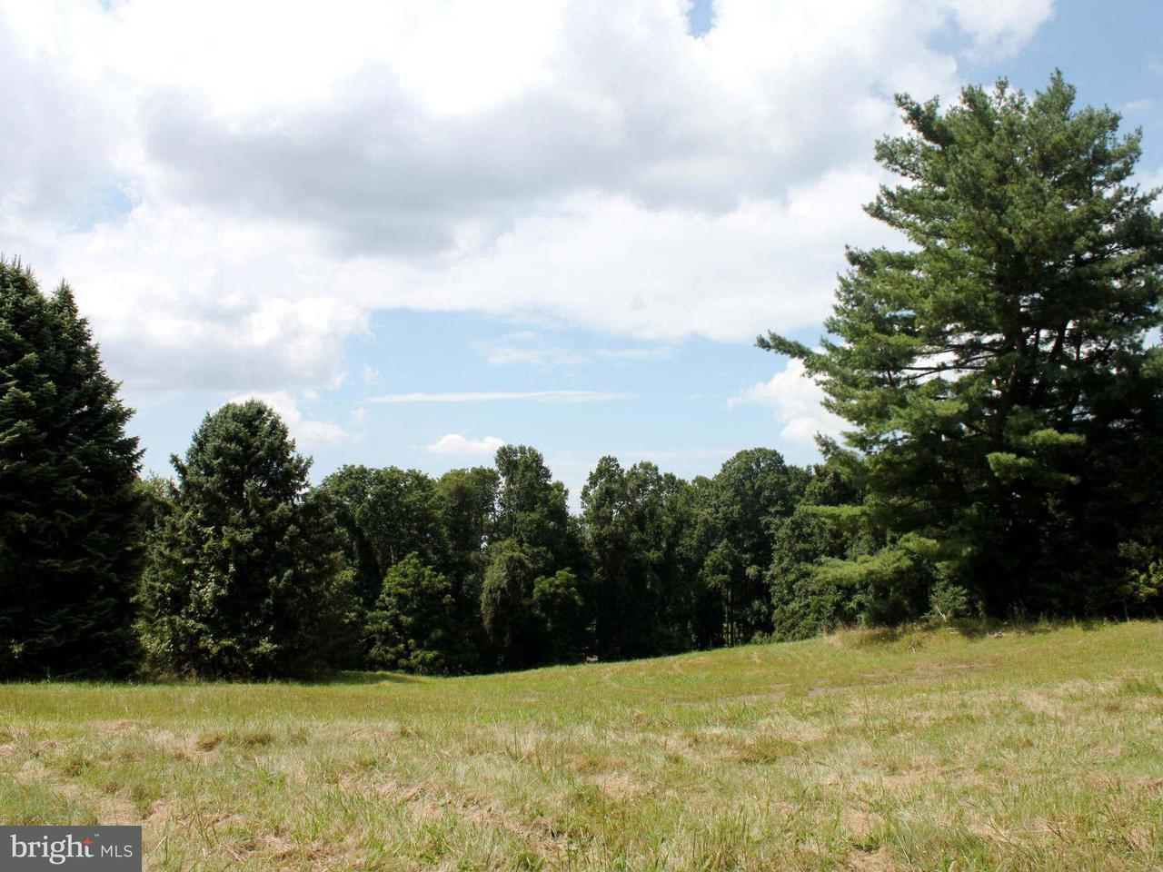 Additional photo for property listing at 346 Runner Road 346 Runner Road Great Falls, Virginia 22066 United States